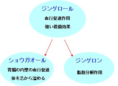 生姜図解b