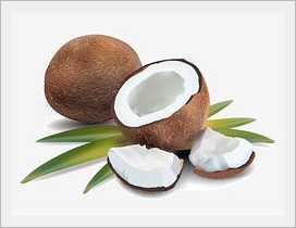 ココナッツ写真b