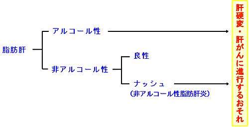 脂肪肝表h