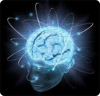 ストレスが脳に与えるダメージC