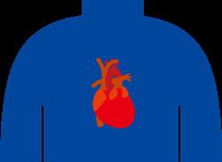 心臓の位置と心筋梗塞A