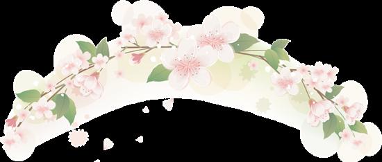 桜の花の枠
