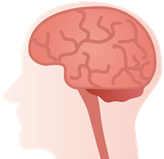 よく噛む効果ダイエット脳のイラスト