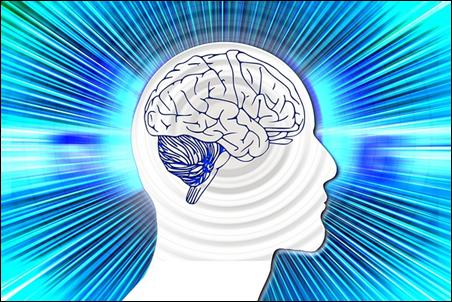 老化防止の食べ物脳のイラスト