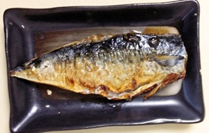 老化防止の食べ物サバのイラスト写真