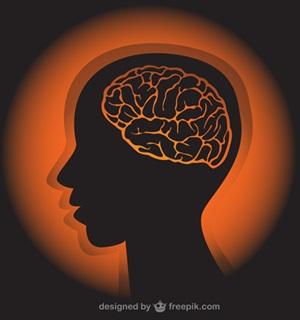 認知症予防・運動の効果脳のイラスト