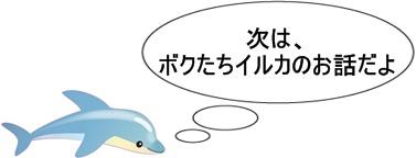 イルカとクジラの違いイルカのイラスト
