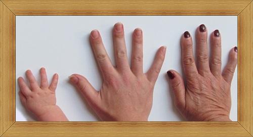 人差し指と薬指の長さの比率3世代の手