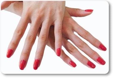 人差し指と薬指の長さの比率女性の手A