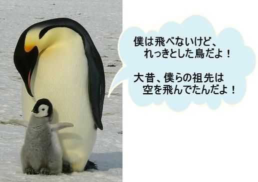 ペンギンの親子フキだし付き