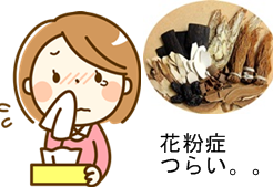 花粉症に漢方薬の小青竜湯はどのくらい効くののアイキャッチ画像
