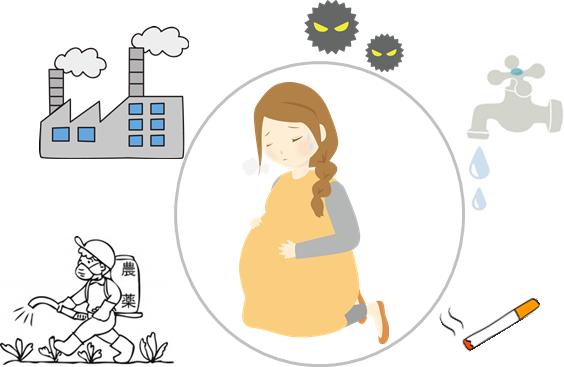 環境ホルモンによる周産期トラブルのイラスト