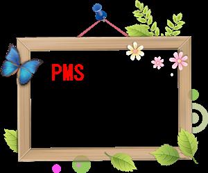 PMSで使われる漢方薬A