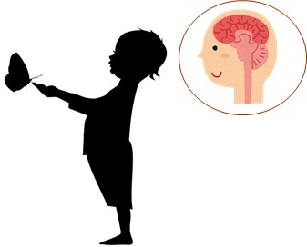 子供と脳の断面図