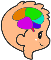 子供の脳のイラストA