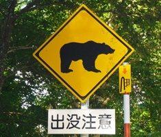 登山やキャンプでの熊対策のアイキャッチ画像
