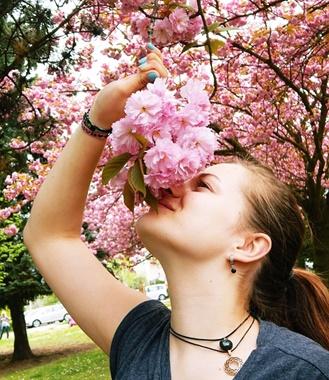 外国人女性のお花見の風景画像