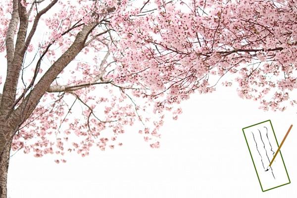 平安時代の貴族の花見のイメージ画像