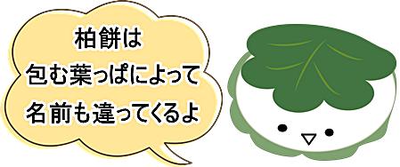 柏餅は包む葉により名前も異なることの説明画像